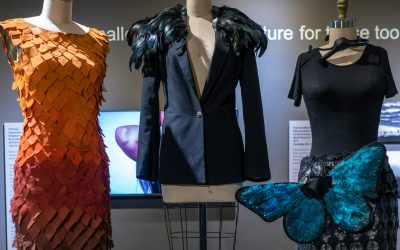 Social Issues Are in the Spotlight at the Museum of Design Atlanta