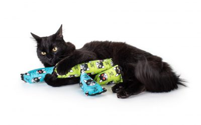 Celebrate National Cat Day with Advocacy—and Great Gifts for Felines and Their Parents